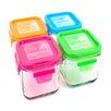 Wean Green Garden 16-Oz Lunch Cube (Set of 4)