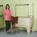 Petzoom Bathe N Groom Pet Washer Amp Reviews Wayfair