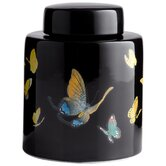 Cyan Design Canisters & Jars