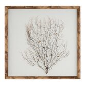 Natural Bamboo Sea Fan Framed Graphic Art