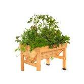 Veg Trugs Novelty Raised Garden