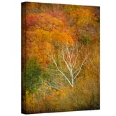 'In Autumn' by David Liam Kyle Graphic Art Canvas