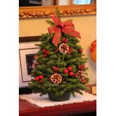 Worcester Wreath Inc. Holiday Accents & Decor