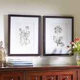 Botany Framed Print Collection