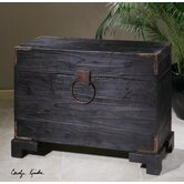 Uttermost Trunks