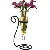 Danya B Vases