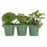 3 Piece Round Pot Planter Set (Set of 18)