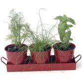 3 Piece Round Pot Planter Set (Set of 12)