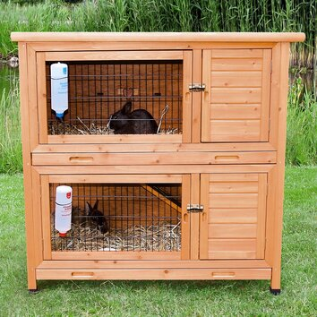 Trixie Natura 2 in 1 Small Animal Hutch amp Reviews Wayfair Supply