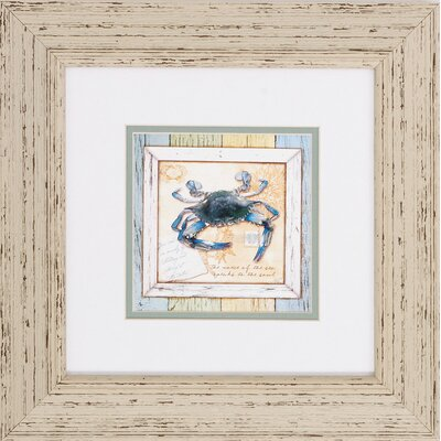 Sea Treasures Framed Wall Art by Propac Images