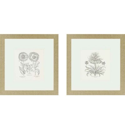 Paragon Flower Impressions Tordilion/Corona 2 Piece Framed Painting Print Set