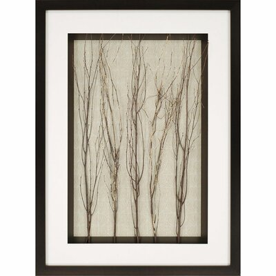 Gold in the Woods Photographic Print Shadow Box by Paragon