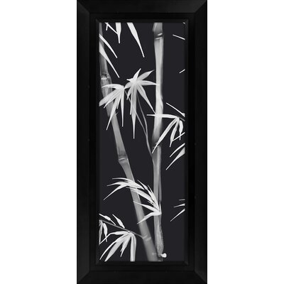Bamboo III Framed Graphic Art by PTM Images