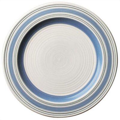 "Pfaltzgraff Rio 10.75"" Dinner Plate"