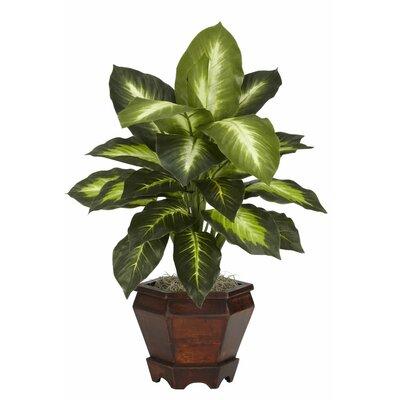 Nearly Natural Dieffenbachia Silk Desk Top Plant in Pot