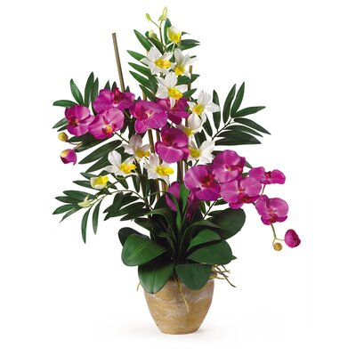 Double Phalaenopsis and Dendrobium Silk Orchid Arrangement in Orchid and Cream by Nearly Natural