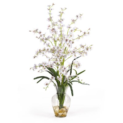 Dancing Lady Liquid Illusion Silk Orchid Arrangement in White by Nearly Natural