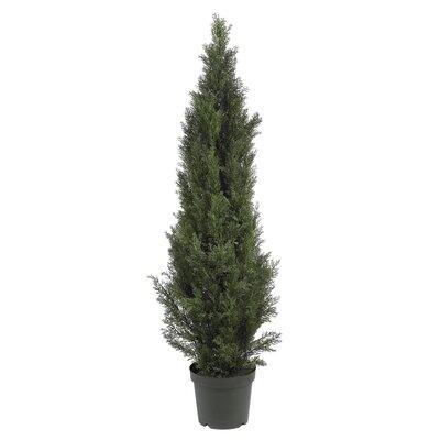 Mini Cedar Tree in Pot by Nearly Natural