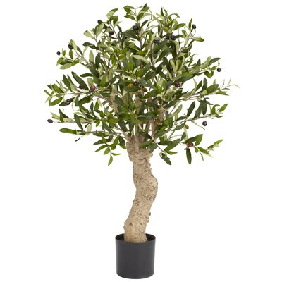 Olive Tree in Pot by Nearly Natural