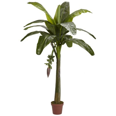 Banana Tree in Pot by Nearly Natural