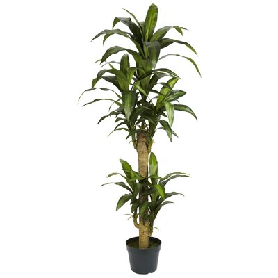 Nearly Natural Yucca Silk Floor Plant in Pot & Reviews ...