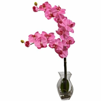 Nearly Natural Phalaenopsis Orchid with Vase