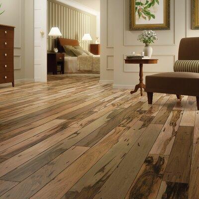 """IndusParquet 3-1/8"""" Solid Brazilian Pecan Hardwood Flooring in Brown"""