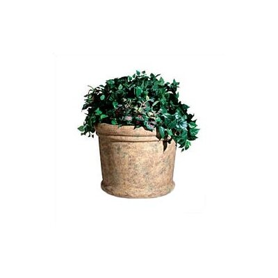 Rubbermaid Commercial Products Milan Round Pot Planter
