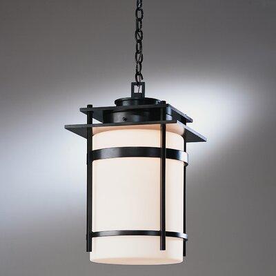 Hubbardton Forge Banded 1 Light Outdoor Hanging Lantern