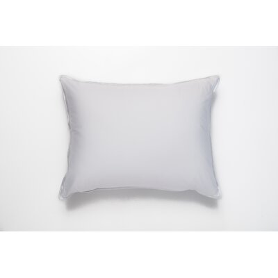 Single Shell Standard Cotton Euro Pillow by Ogallala Comfort Company