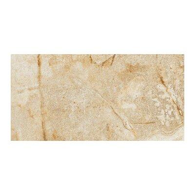 Vesale Stone 10