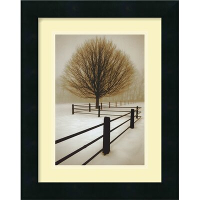 Amanti Art 'Solitude' by David Lorenz Winston Framed Photographic Print