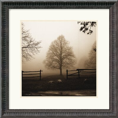 Amanti Art 'Morning Texture' by Harold Silverman Framed Photographic Print