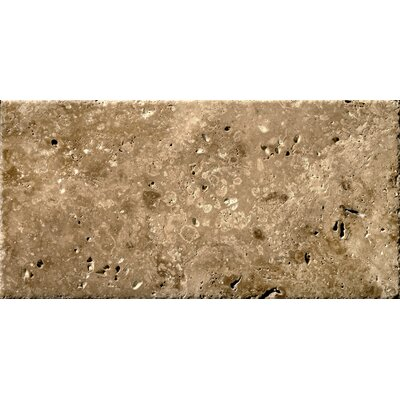 "Emser Tile Natural Stone 8"" x 16"" Travertine Field Tile in Beige"