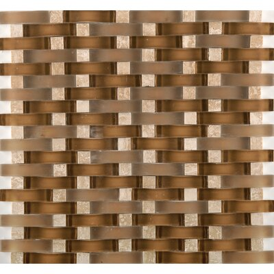 Lucente Tromba Random Sized Glass Mosaic Tile in Brown by Emser Tile