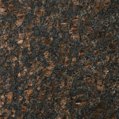 "Emser Tile Natural Stone 12"" x 12"" Granite Field Tile in Tan Brown"
