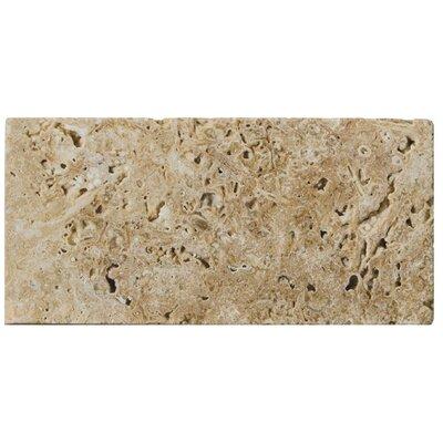 "Emser Tile Natural Stone 3"" x 6"" Travertine Subway Tile in Mocha"