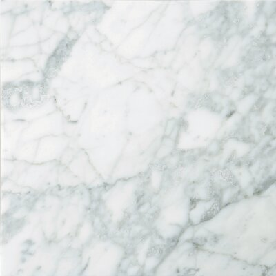 """Emser Tile Natural Stone 18"""" x 18"""" Marble Field Tile in Bianco Gioia"""