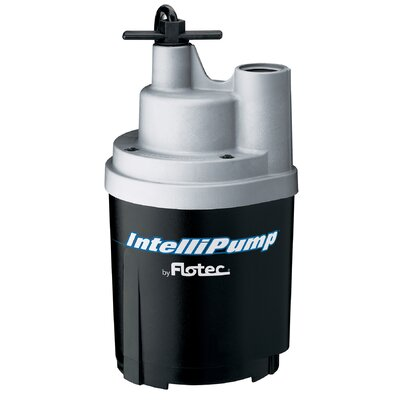 1/4 HP Utility Pump by Flotec