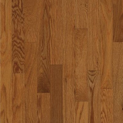 "Wildon Home ® 2-1/4"" Solid White Oak Hardwood Flooring in Auburn"
