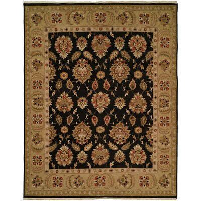 Sierra Hand-Knotted Black / Camel Area Rug by Wildon Home ®