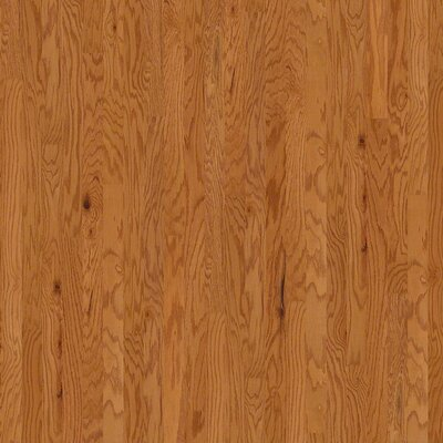 "Wildon Home ® 3-1/4"" Engineered Oak Hardwood Flooring in Rustic Natural"