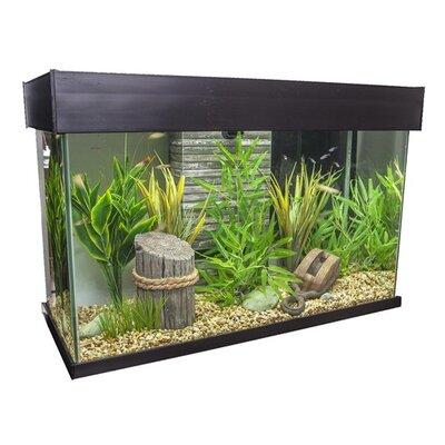 Fluval 25 Gallon Accent Aquarium by Hagen