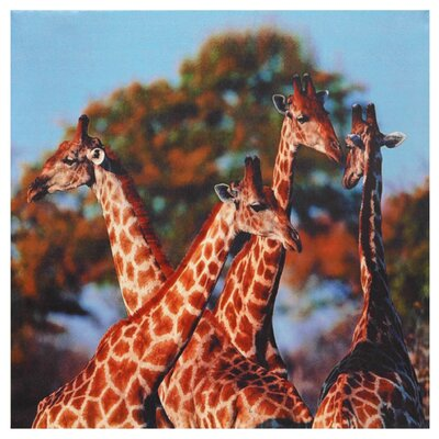 Oriental Furniture Four Prairie Giraffes Photographic Print on Wrapped Canvas