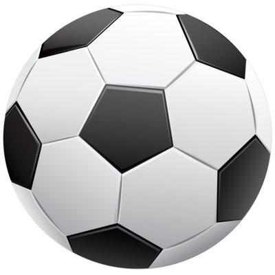 Secretly Designed Soccer Sign Ball 3D Wall Décor