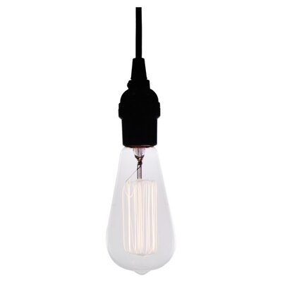 Edison 1 Light Mini Pendant Product Photo