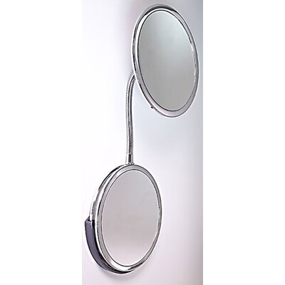 Goose Neck Vanity and Wall Mirror by Zadro