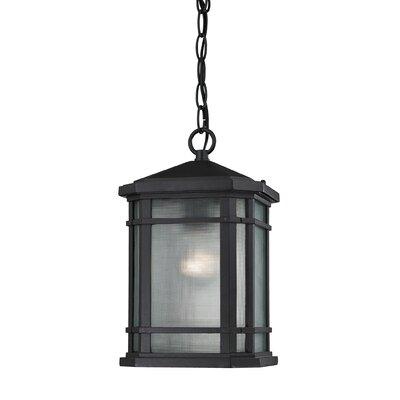 Lowell 1 Light Outdoor Pendant by Elk Lighting