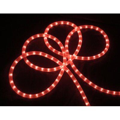 Indoor/Outdoor Christmas Rope Light by Vickerman