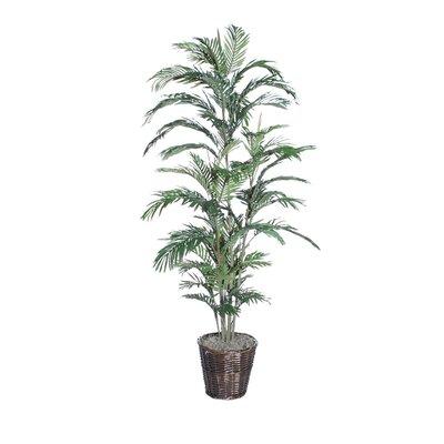 Vickerman Co. Deluxe Areca Palm Tree in Planter